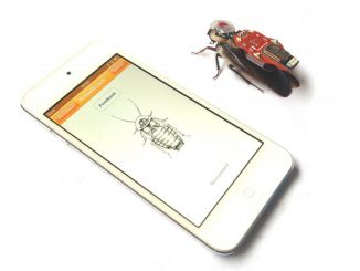 脑机通信:将小强打造成可控机器人