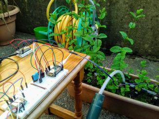 用树莓派制作一款自动浇灌系统